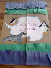 Antarctic Animals lapbook cover