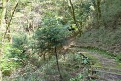 神奈川県立自然環境保全センター(Kanagawa Nature Preservation Center, Japan)