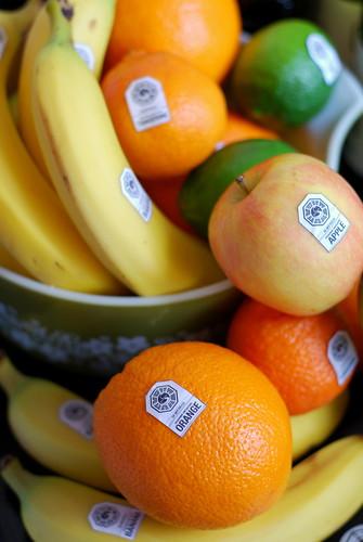 dharma fruit