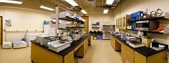 Bailey Lab