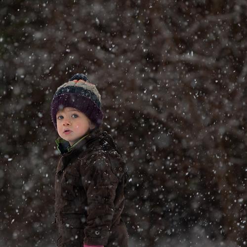 snowstan II