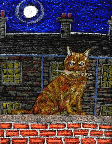 Glasgow Ginger Cat