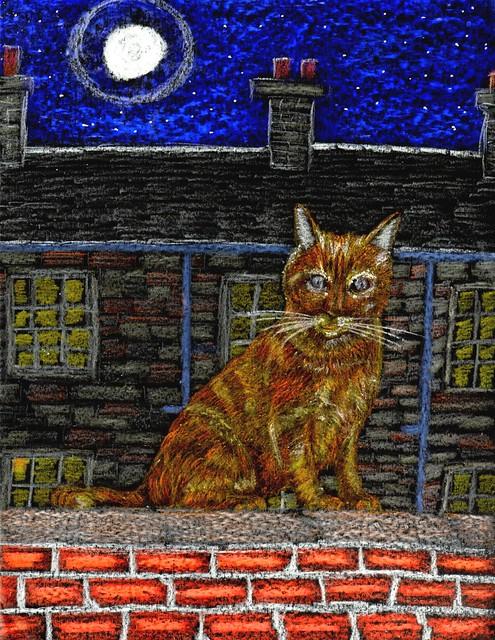 Glasgow Ginger Cat