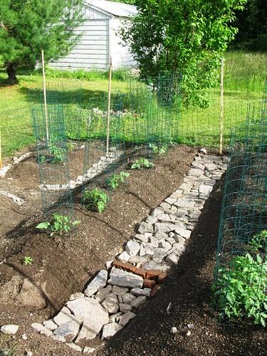 The Tomato Garden