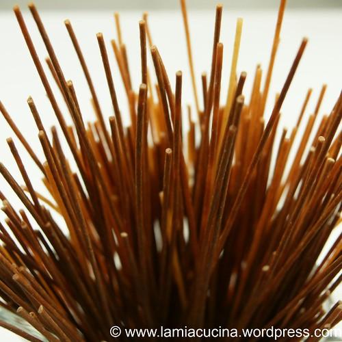 Spaghetti sonnengebräunt 0_2009 12 15_4147