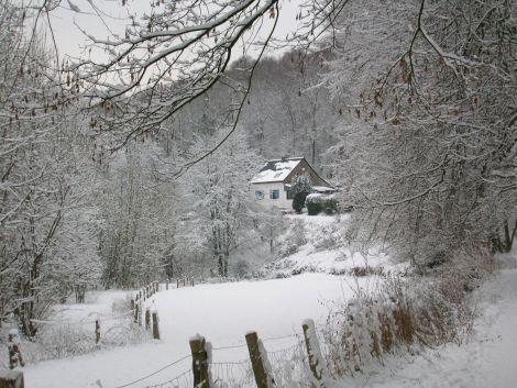 snow3_blog