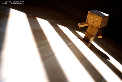 009/365:  Discovering Sunbeams.