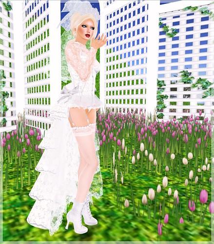 Review - Reasonable Desires - Burlesque Bride, 1