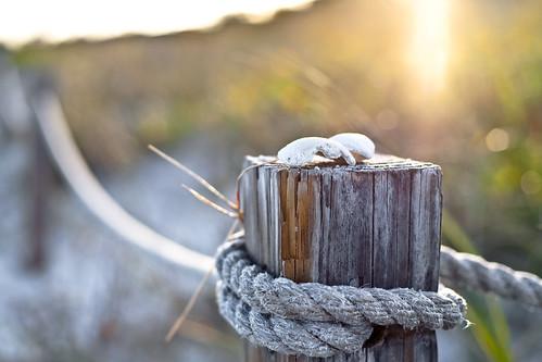 Island Rope Fence