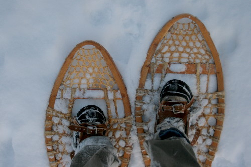 Snowshoes on snow