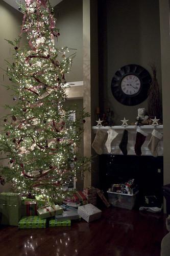 Christmas 2009_0030