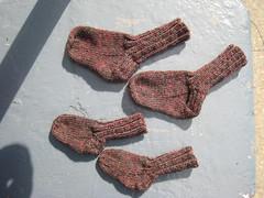 SocksBaby_2010_0_12_TrekkingSport1454