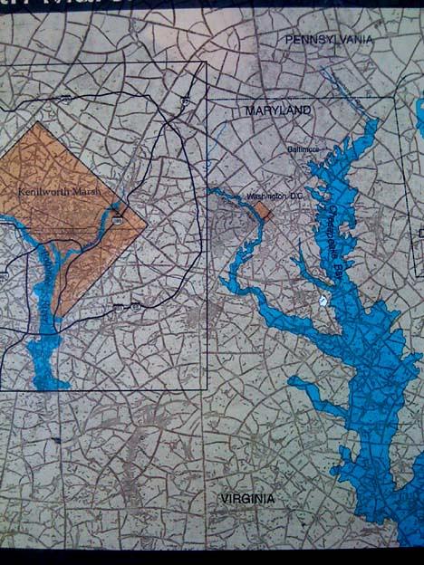polygonal_cracking_DC_map
