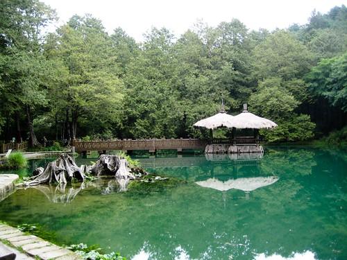 big sister pond