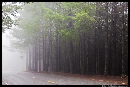 Briceland Road