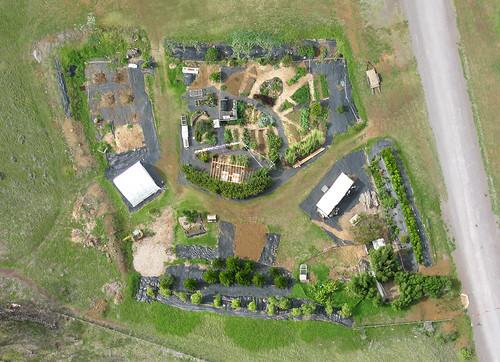 Mala`ai - The Culinary Garden at Waimea Middle School - 11 November, 2010