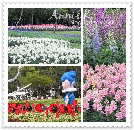 2010台北花卉展大安森林公園2