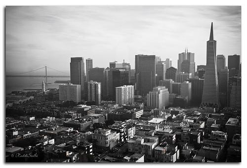 vintage SF Skyline