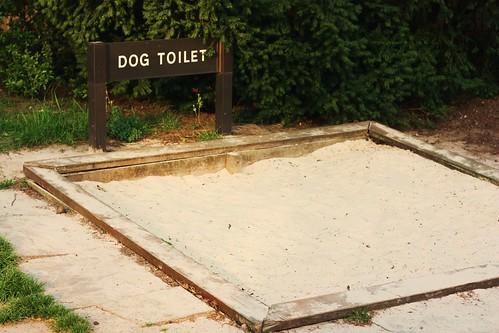 Dog Tiolet