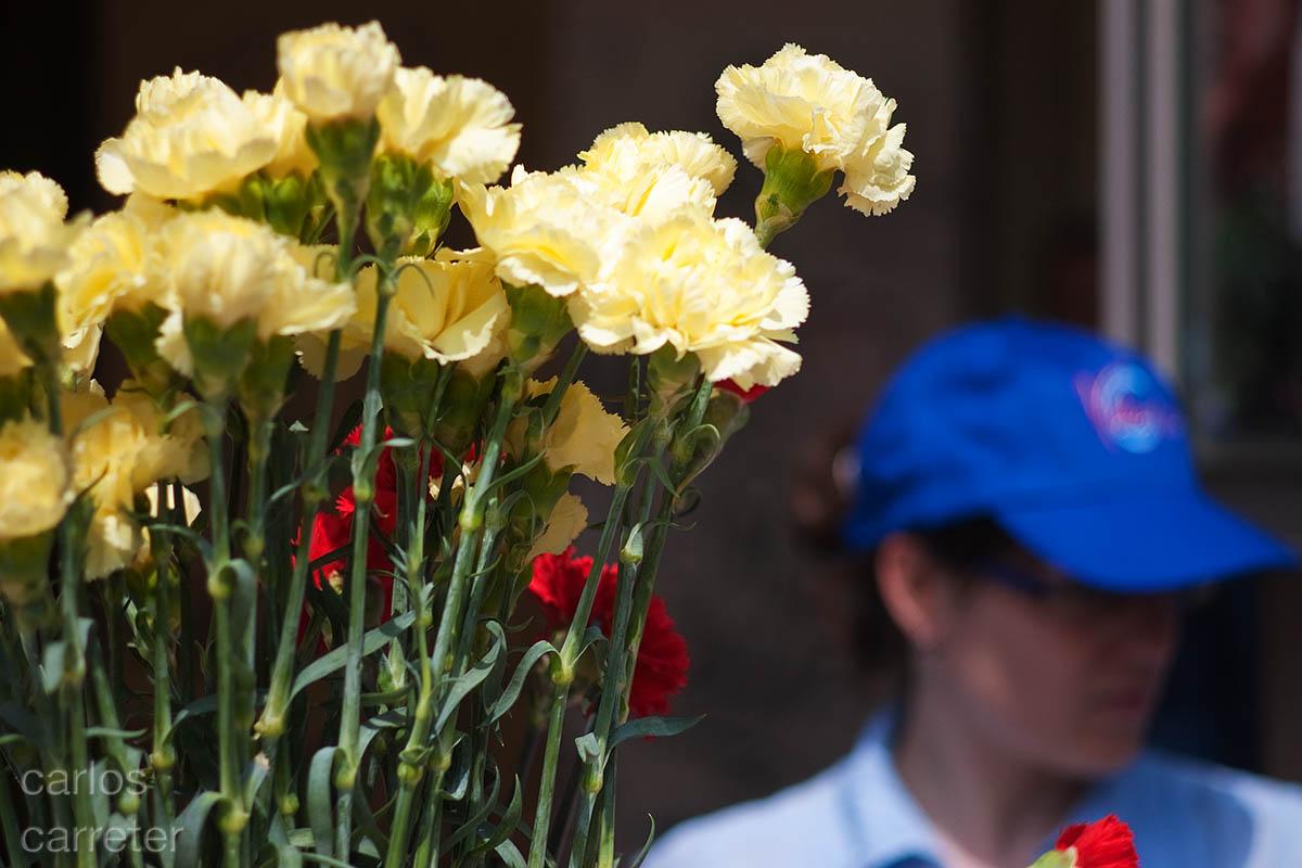 Flores en el día del libro