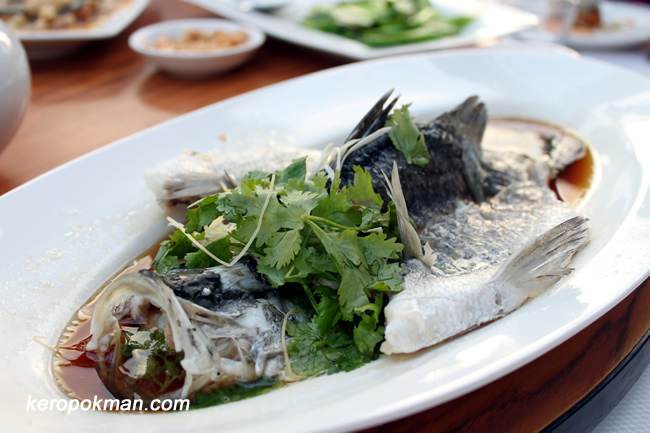 Fish steamed Hong Kong Style