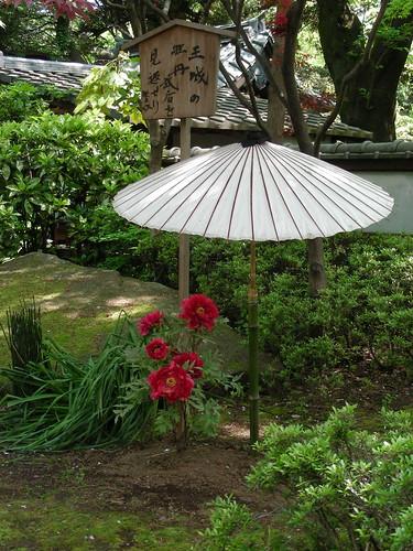 paeony garden ueno