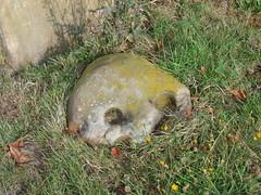 Thundersley 'skull stone' by ocifant