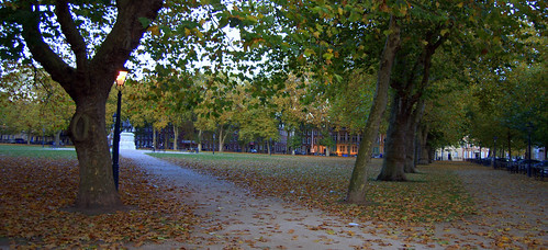 Two Paths To Queen Square