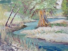 Frio River - 9x12