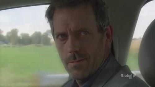 House:看到你(Wilson)我整個人都酥麻了