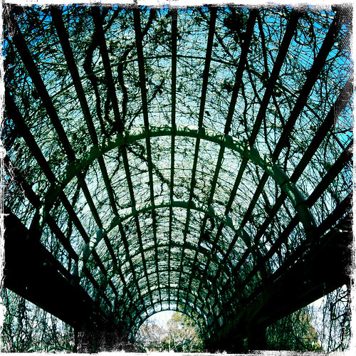 National Arboretum - Taken With An iPhone