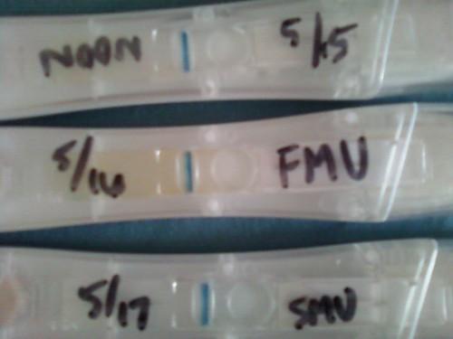 Medroxyprogesterone And Still Bleeding