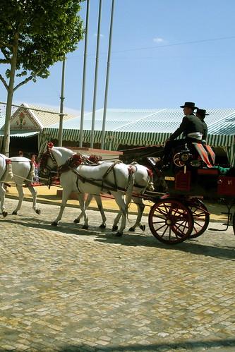 seville, horses.