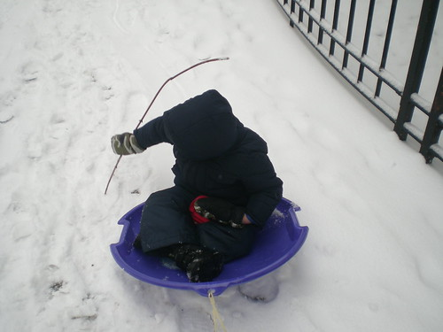 Stick and sled