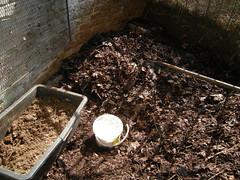 Kompost schichten 1