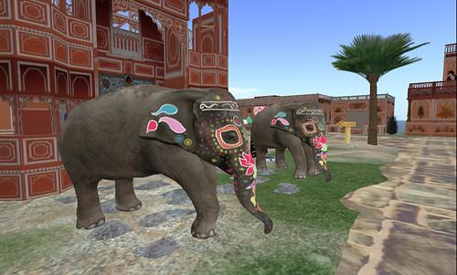 Shekhawati: outside the Ampitheatre