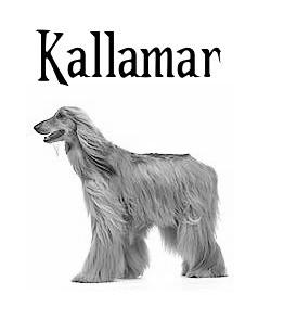 grayscale Afghan hound, captioned Kallamar in Kallamar font