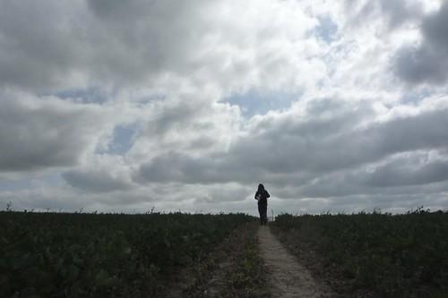 field #829