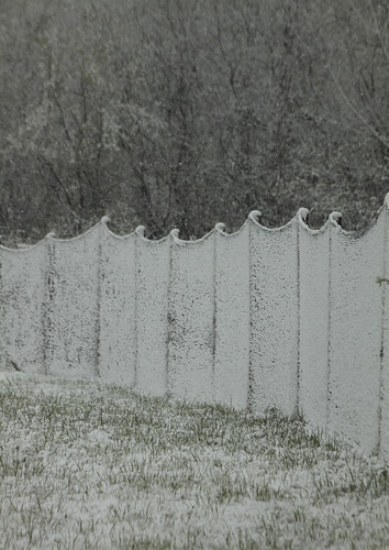 deer fence in spring snow