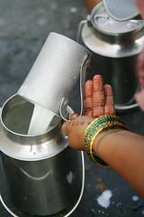 Urban buffalo milk production in Andhra Pradesh