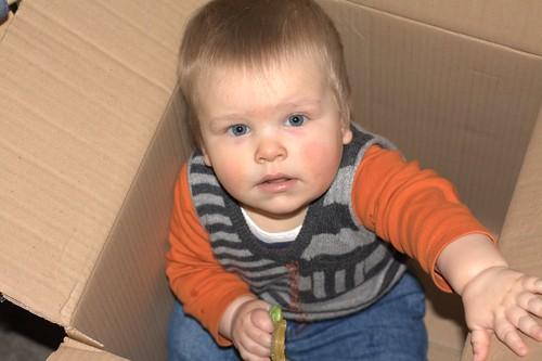 Cardboard Playpen
