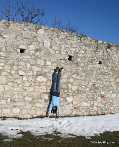 Hainburg Feber 2010