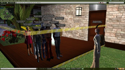 Bots in a Linden Home_001