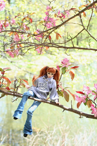 Misaki in a Tree by the Lake