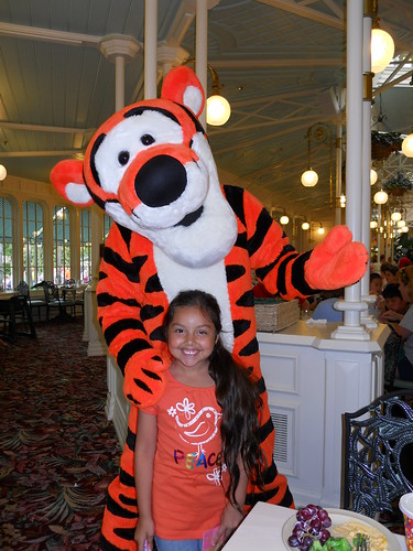 magic kingdom (282)