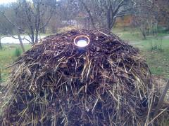 Workshop: hot composting