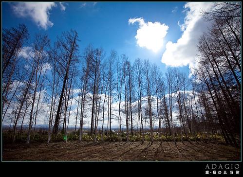 BIEI_0272.jpg
