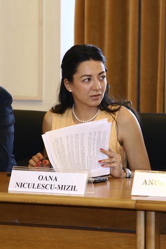 Oana Niculescu-Mizil la Comisia de Afaceri Europene8
