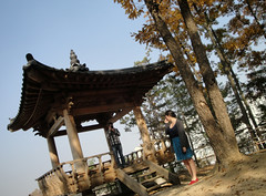 Pagoda by Ellen and Savannah's