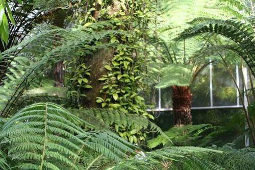 20090919 Edinburgh 20 Royal Botanic Garden 229